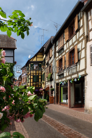 old town, roses, frame-work, alsace, rose tree - 14310337