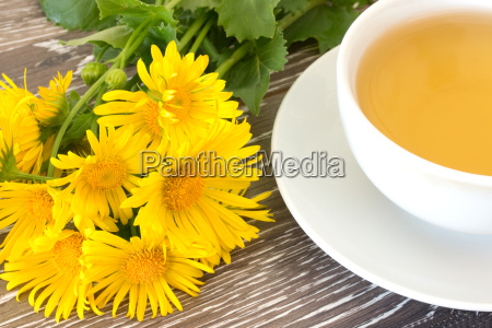 cough tea with coltsfoot