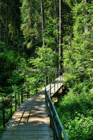 wooden bridge with railingthrough the black