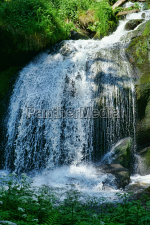 the waterfall in triberg 17
