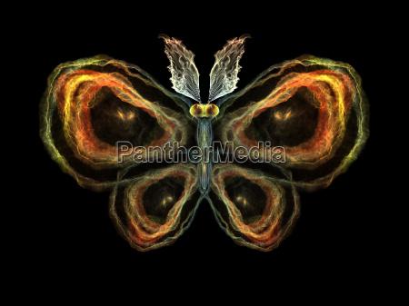 butterfly elements