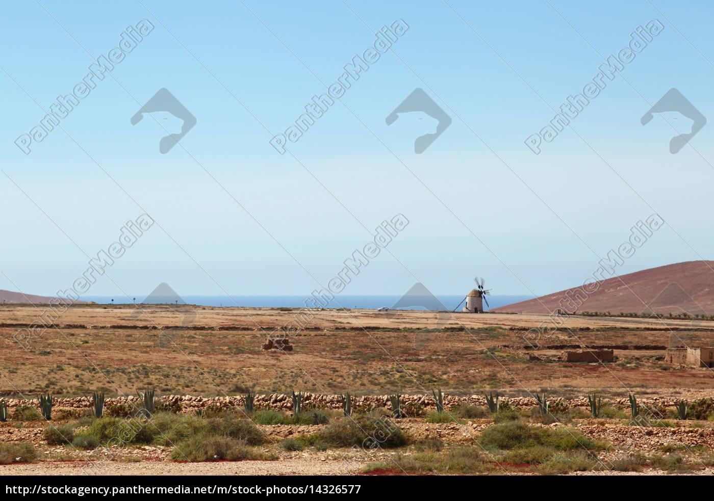 horizon, holiday, vacation, holidays, vacations, canary islands - 14326577
