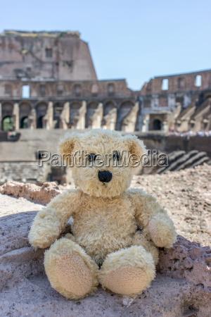 bear in colosseum in rome