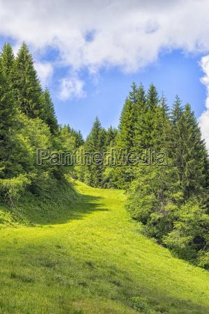 landscape allgaeu