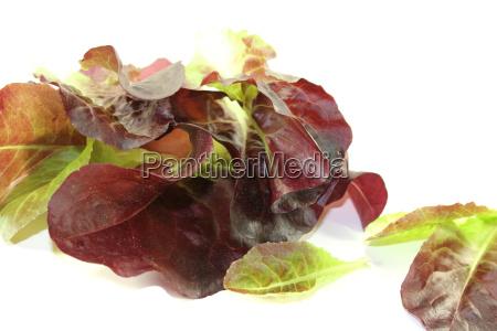 crisp red salad