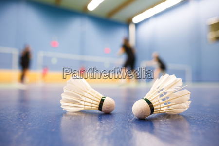 badminton badminton courts with players