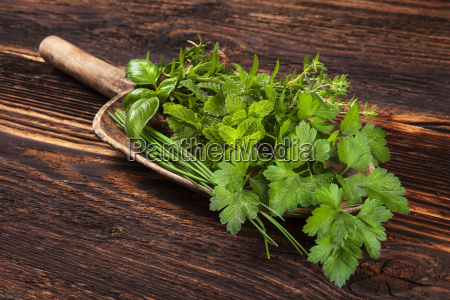 various aromatic culinary herbs rustic style