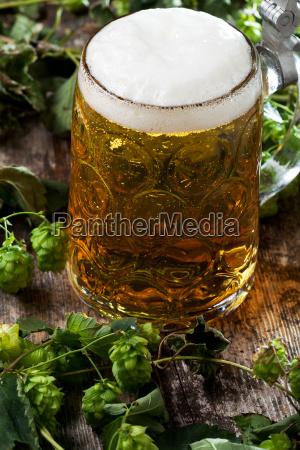 beer in jug on hops