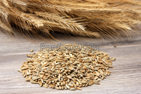 rye with seeds