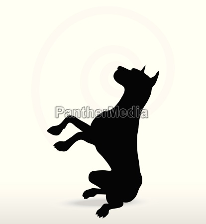 dog silhouette in beg pose