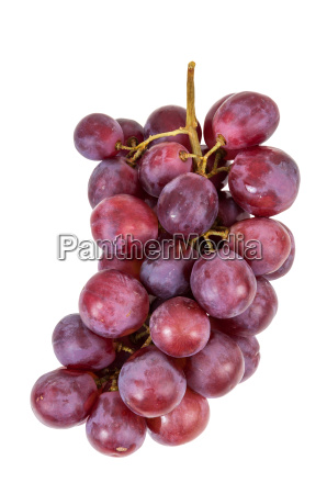 bunch of red grapes on a