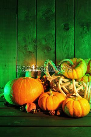halloween pumpkins in green light