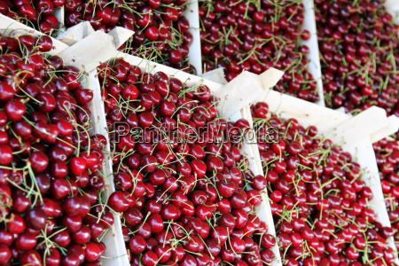 cherries in boxes at a farmers