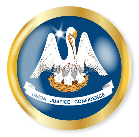louisiana flag button