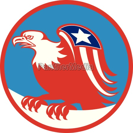 american eagle flag on wing perching