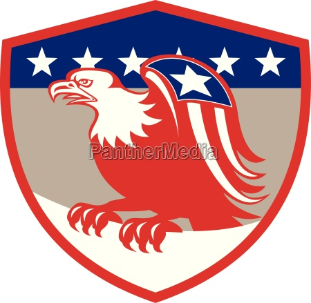 american eagle flag wings perching crest