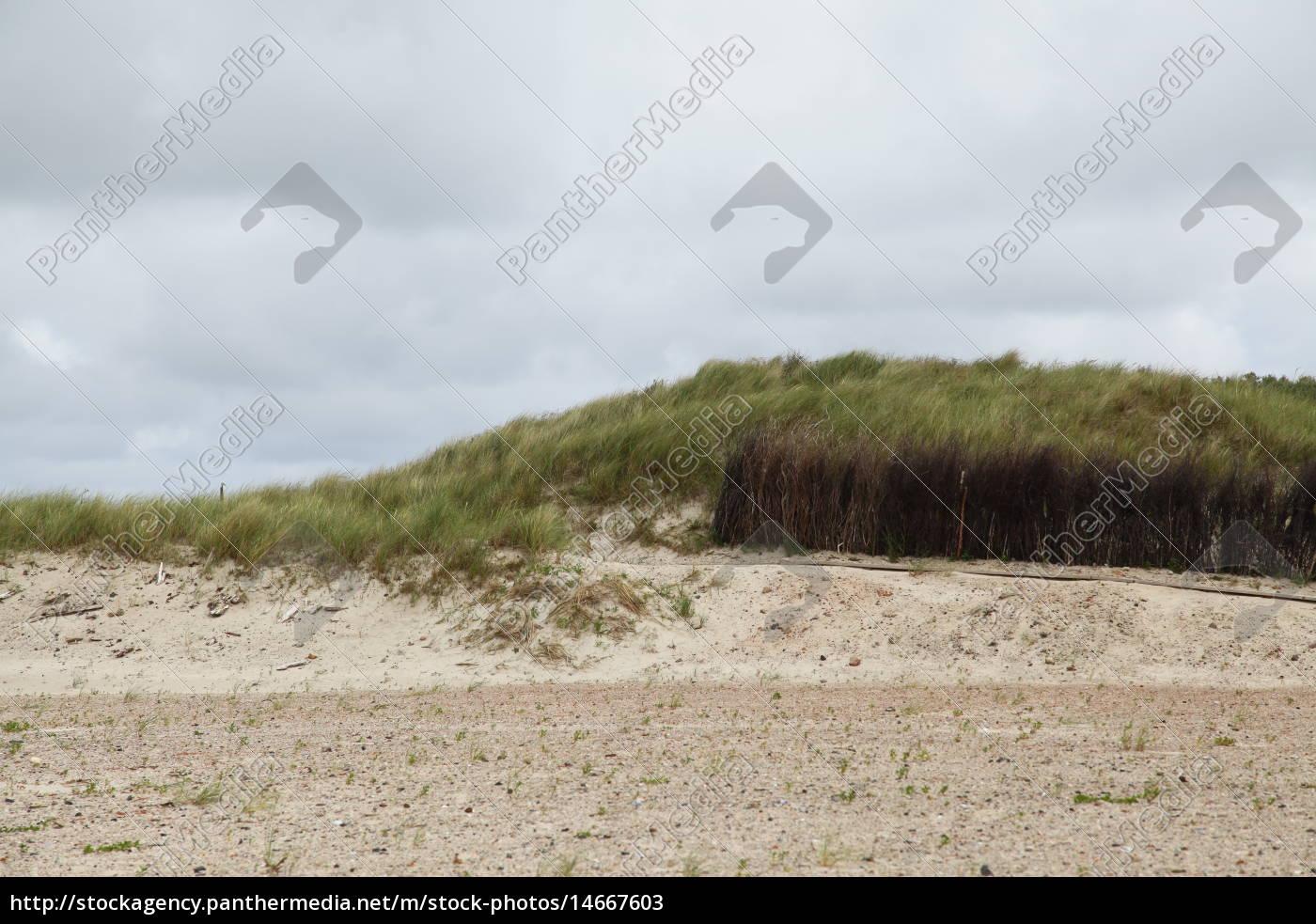environment, enviroment, holiday, vacation, holidays, vacations - 14667603