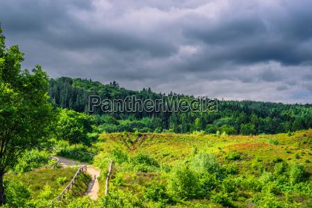 nature in denmark with dark clouds