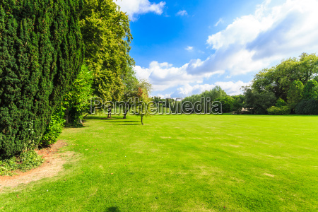 countryside view of green field nature