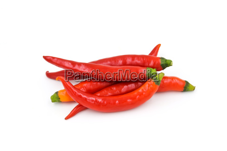 red chili pepper isolated on a