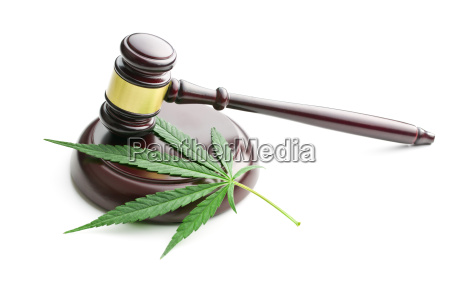 cannabis leaf and judge gavel