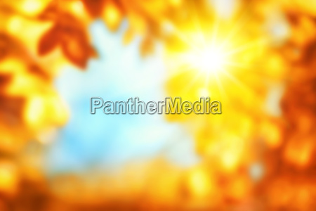 defocused autumn background