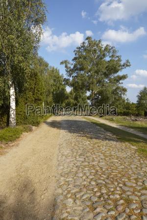 luneburg heath roadway with cobblestone