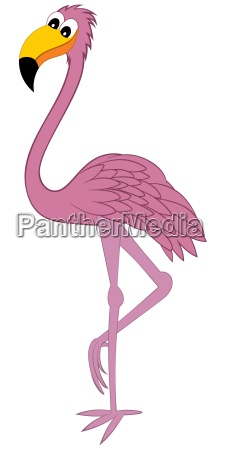 funny cartoon flamingo