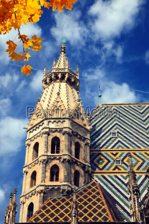 st stephan cathedral in vienna