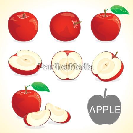 set of apple fruit in various