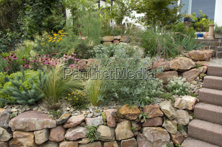 rockery drywall five months after planting