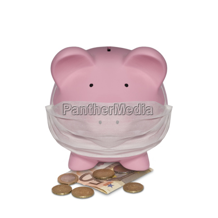 pig with face mask