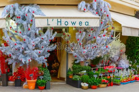 flower shop hovea paris