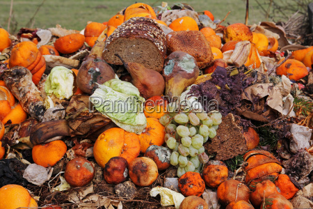 discarded fruit and bread on the