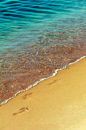 footprint on the wet sand of