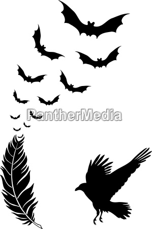 raven feather with flying halloween bats