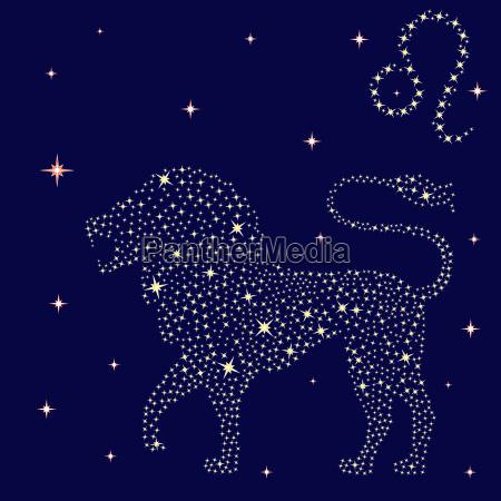 zodiac sign leo on the starry
