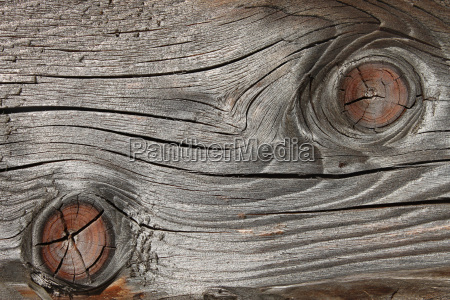 old wooden board with annual rings