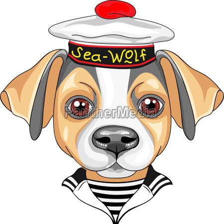vector cartoon dog jack russell terrier