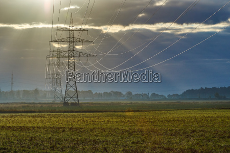 beautiful morning light with power poles