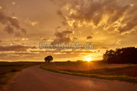 wonderful light with country road