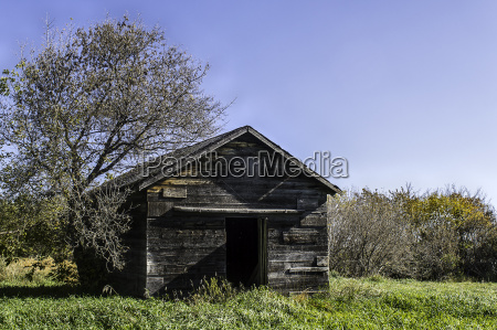 old abandoned chicken coop open