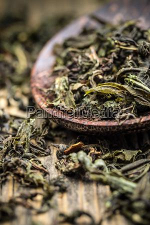green, tea, leaves - 14935021