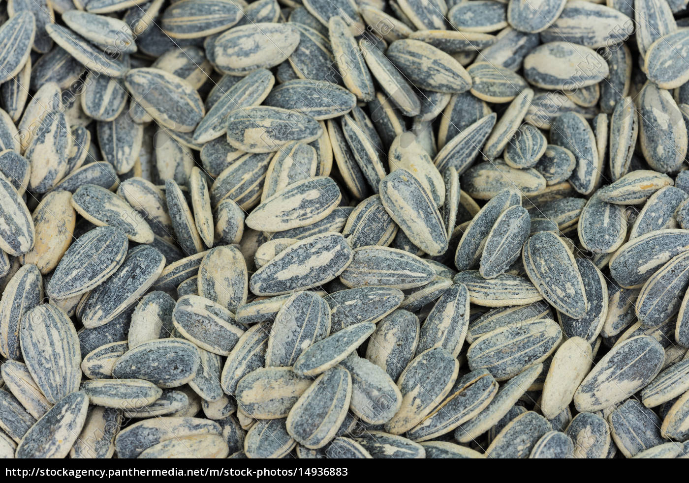 sunflower, seeds, roasted - 14936883