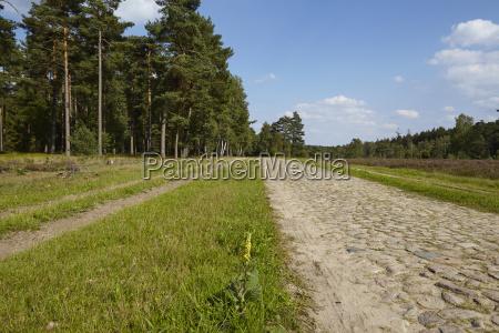 luneburg heath track through the