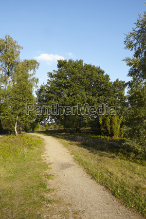 luneburg heath hike path