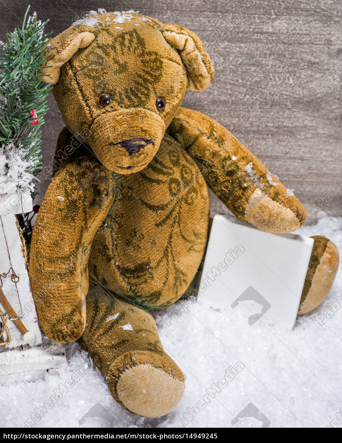 teddy, sitting, in, the, snow, and - 14949245