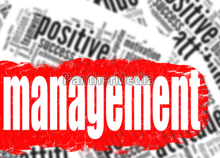 word cloud management business sucess concept