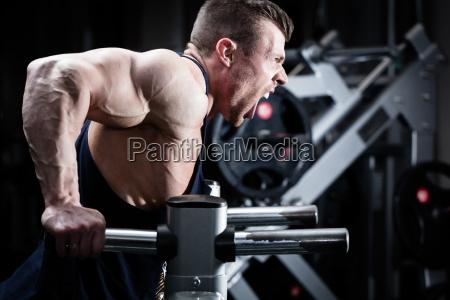 training mit hanteln im fitnessstudio