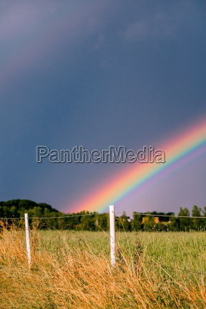 rainbow coming over a field